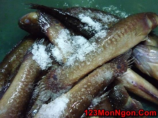 Cách làm canh cá bớp nấu lá lốt nóng hổi thơm lừng quá ngon miệng bổ dưỡng phần 3