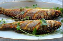 Cách làm món cá chiên chấm mắm gừng đơn giản mà giòn ngon cực hấp dẫn ăn là ghiền